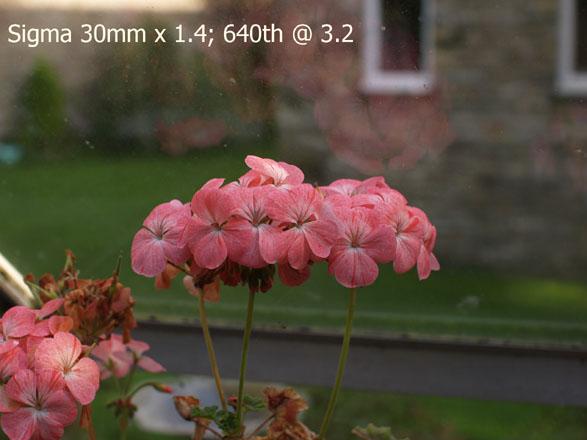 biofos.com: Sigma 30mm F=1.4 lens review.